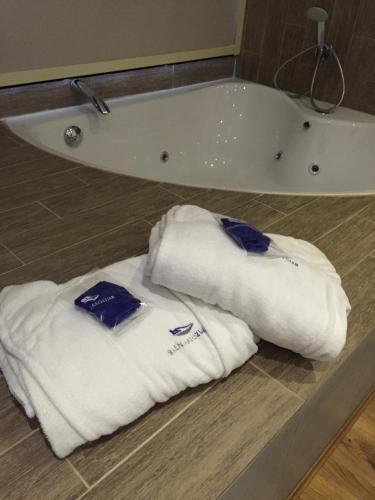 Suite Superior - No reembolsable Hotel Balneario de Zújar 9