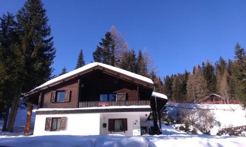 Отель Fichtenblockhütte 0 звёзд Австрия