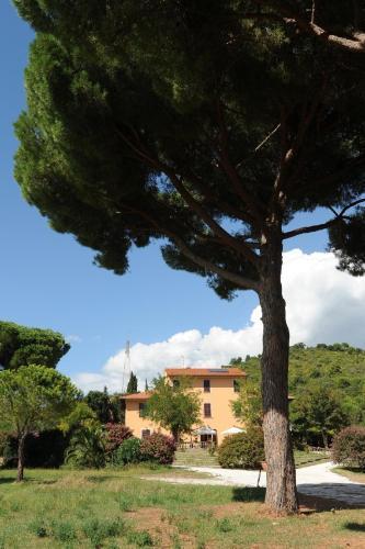 foto Villa Boldrini b&b (Campiglia Marittima)