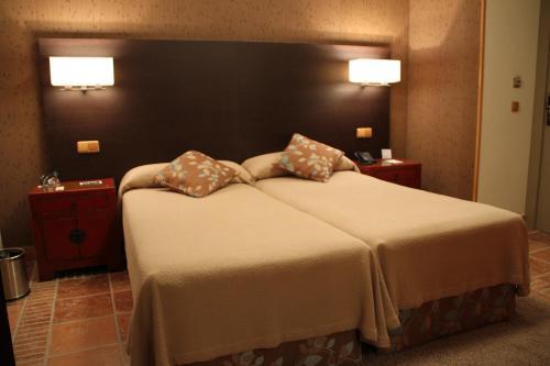 Hotel Palacio Dos Olivos