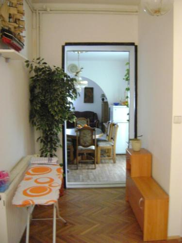 Apartments Mileva