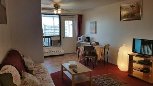 Studio Apartment Queens New York new york queens studio apartment, rego park, ny, united states