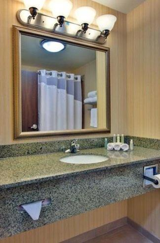 Bathroom Holiday Inn Express Hotel & Suites Dewitt - Syracuse