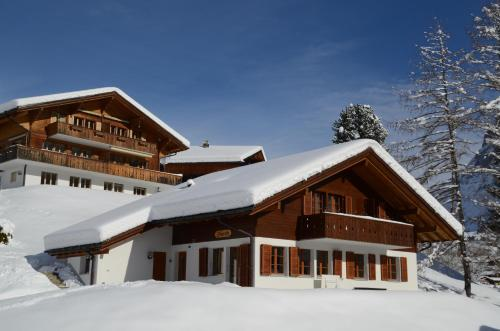 Apartment Dolomit DG 3.5- GriwaRent, Grindelwald