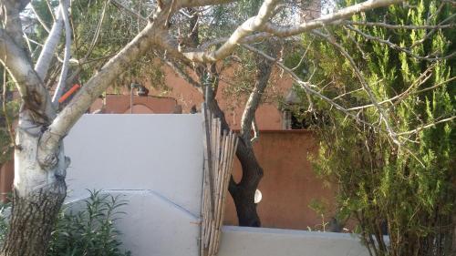 foto Appartamento Lu Pitrali (Costa Dorata)