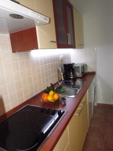 Apartment Biocic