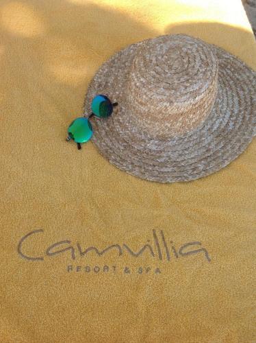 Camvillia Resort - 28 of 42