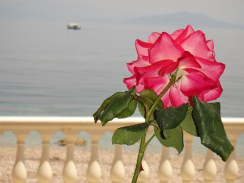 Apartments Corfu Sun Sea Side, Benitses