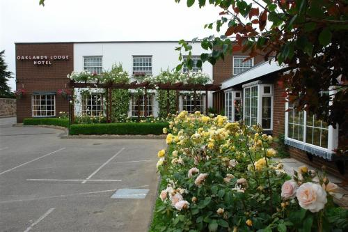Oaklands Lodge Hotel (B&B)