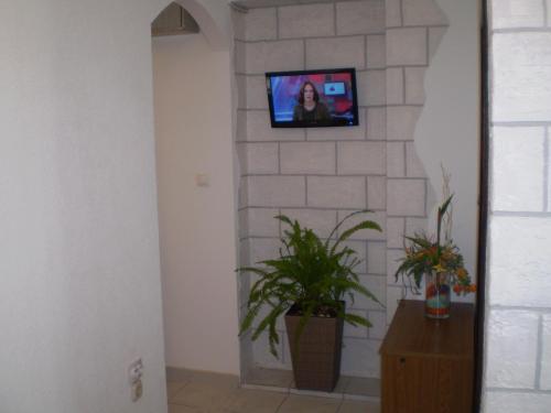 Apartments Kosor