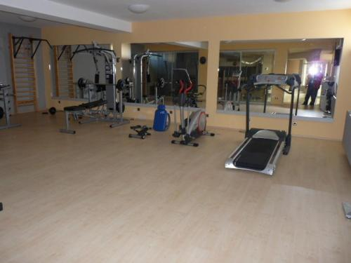 fitnesscenter Luxury Villa in Balaton