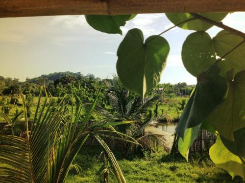 La Jungla Tropical Bungalows in Mompiche Room Deals Photos Reviews
