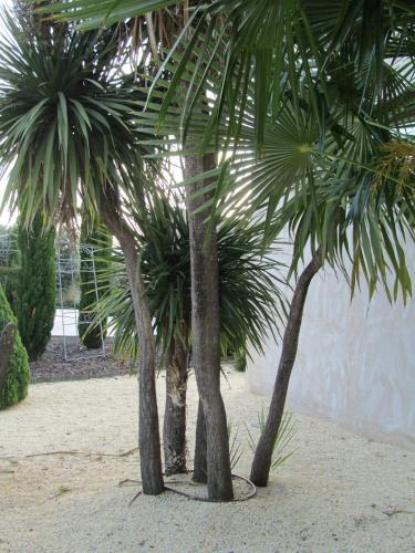 Double Room Villa Nazules Hípica Spa 1