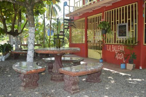 Picture of La Ballena Roja Beach Hotel