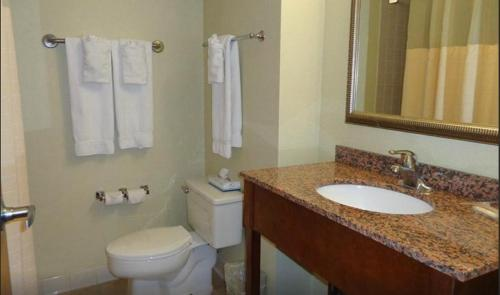 Deluxe King Room with Roll-In Shower - Disability Access/Smoking