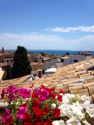Pura Vida Mallorca Hotel