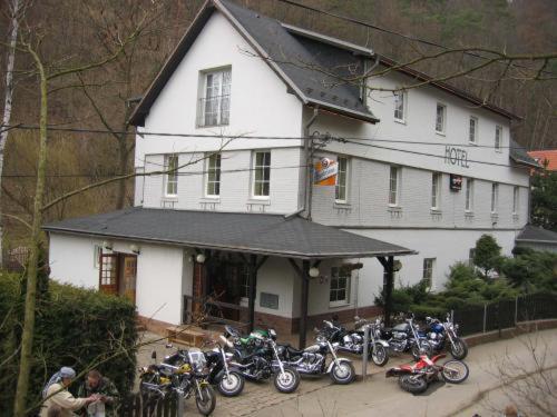 Hotel Tronicek