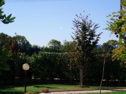 House Luigi front view