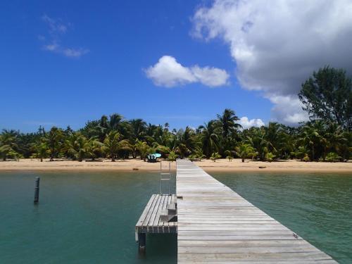 Sabal Beach, Monkey River Town