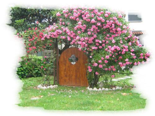 foto B&B Villa Mirella (Cermenate)