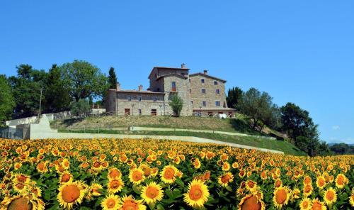 foto Borgo Sole Umbria (Fratta Todina)