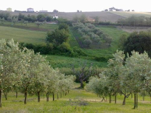 Agriturismo bio Verde Armonia