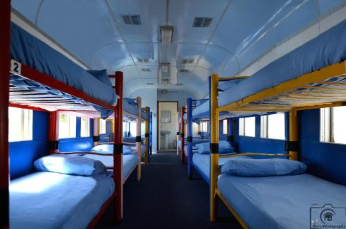 Bed in 16-Bed Dormitory
