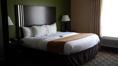 Comfort Suites Jewett