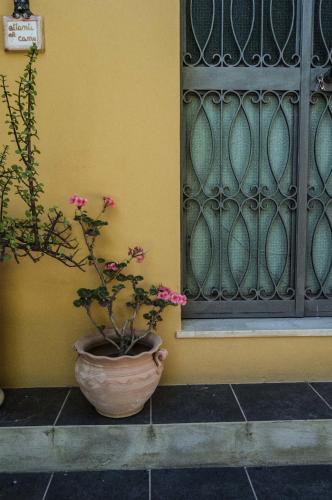 foto Villa Iris (Lido di Noto)