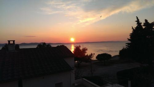 Vujica Zadar