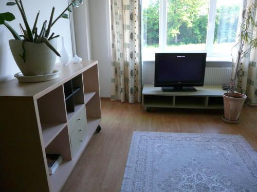Suur-Sepa Apartment
