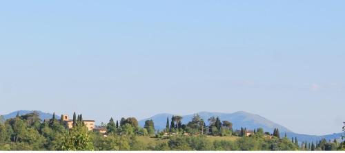 foto Villa Bizzi (Montone)
