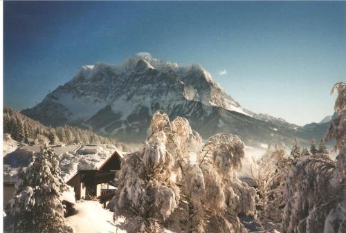 Отель Alpenflora 0 звёзд Австрия