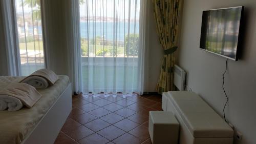 Apartment Antea Pontica