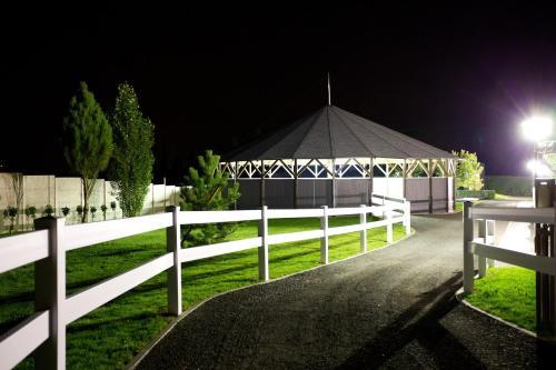 Master Horse Club - Svojetice