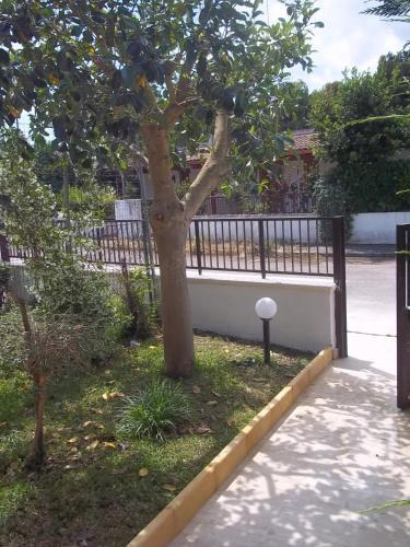 foto Villa Dei Visir (Conca Specchiulla)