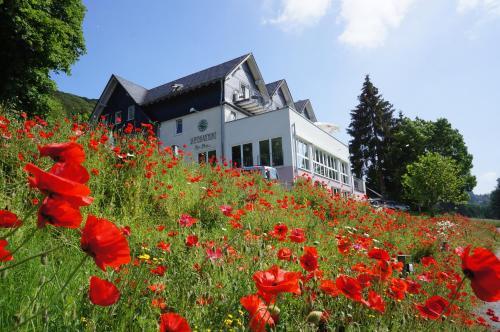 Отель Waldhotel Schinkenwirt 3 звезды Германия