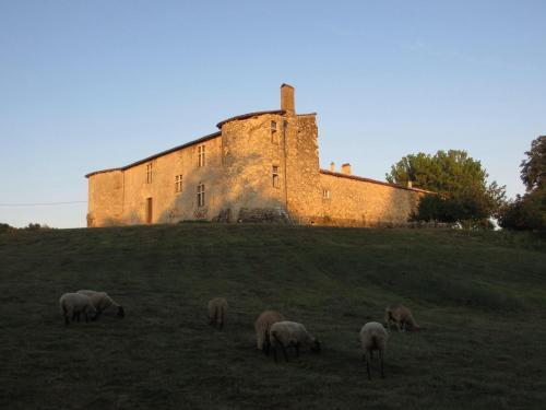 Le Château De Sauros