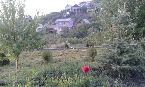 Гостевой дом Водопад