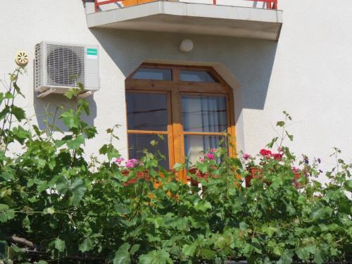 Guest House Gyuviyski
