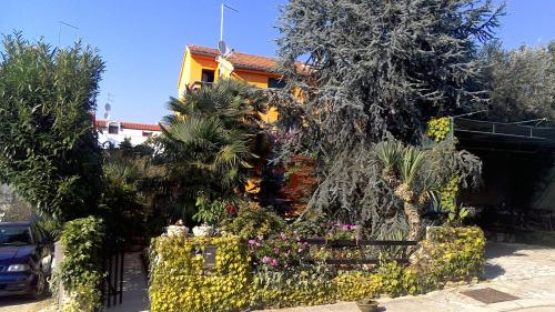 Guest House Zoranka