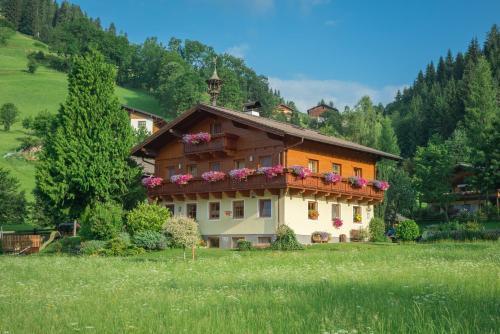 Bauernhof Auhof - Apartment