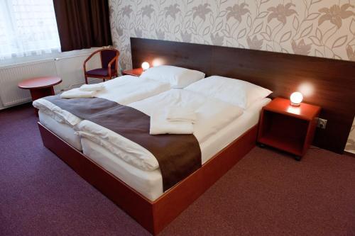 Hotel Vír