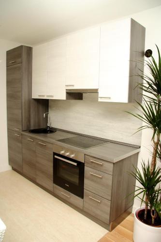 Apartment Cvjetni