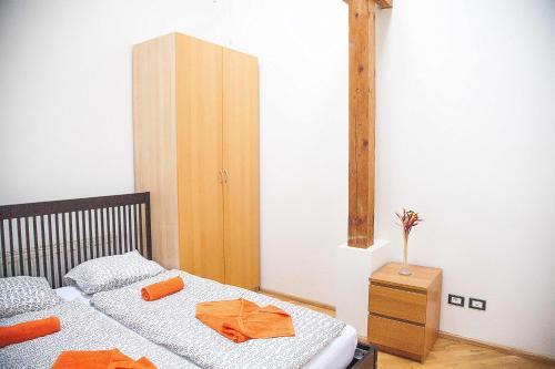 Unique Andel Apartment