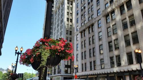 3 starts hotel in Chicago