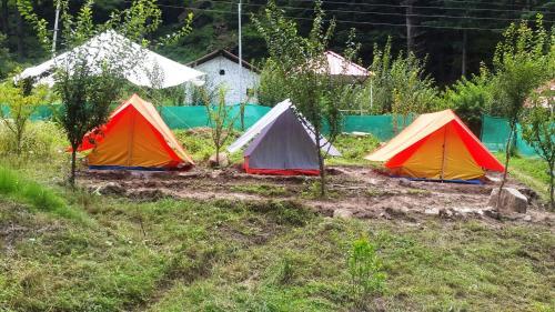 Отель Pinetree Camps Kasol 0 звёзд Индия