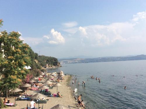 Отель Atamer Doga Resort 0 звёзд Турция