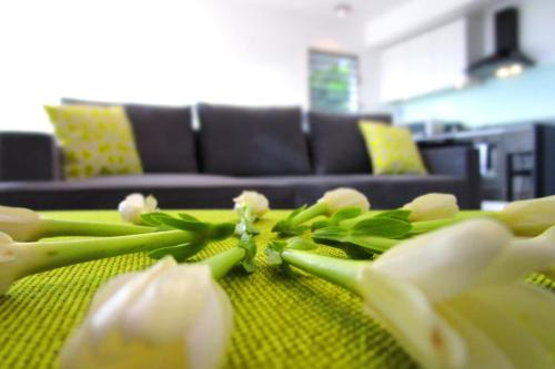 Apartment Heitiare, Papeete