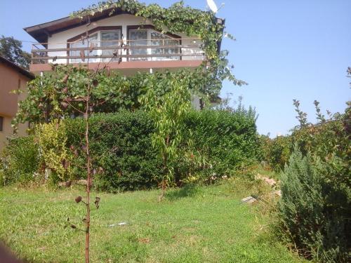 Villa Kokita